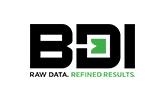 bdi logo design project