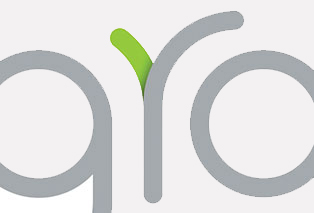 groio logo design closeup