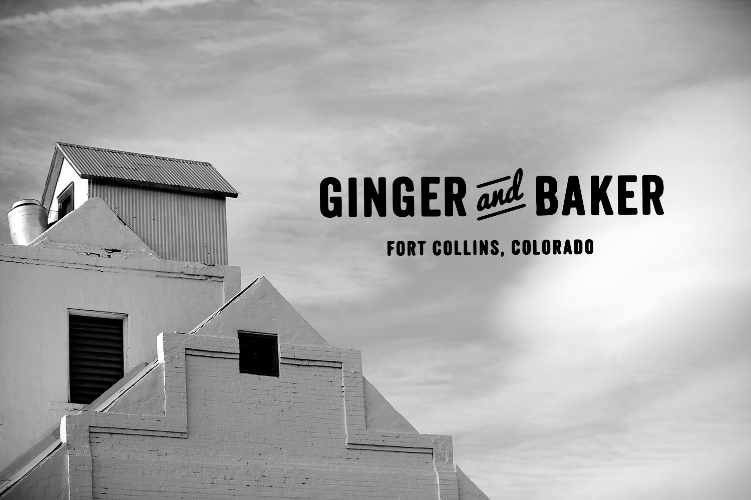custom website design for ginger and baker