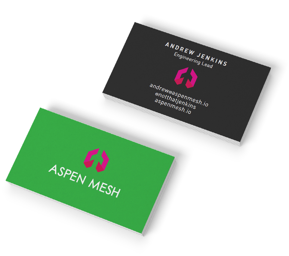 aspen mesh print design