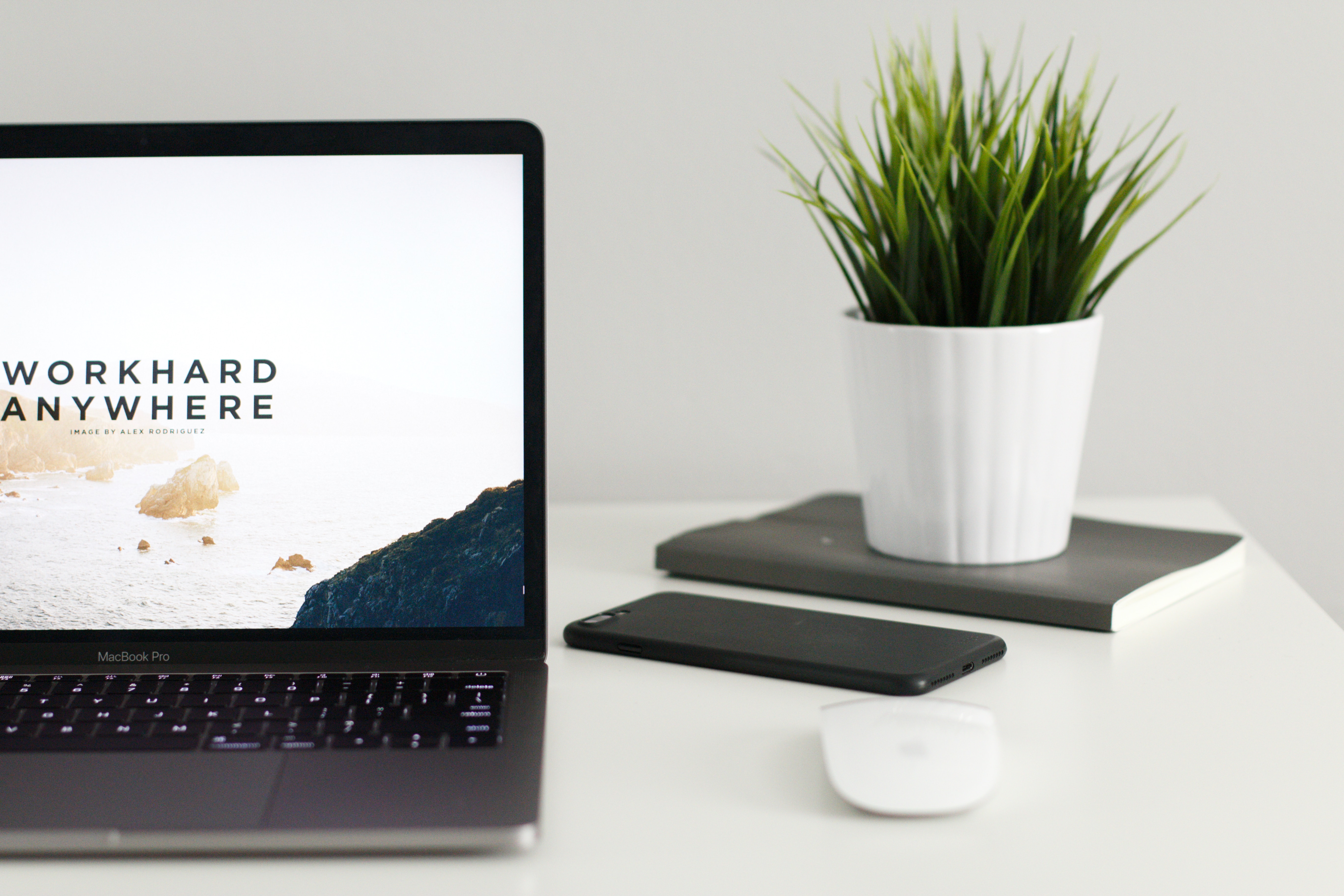 laptop mouse and houseplant